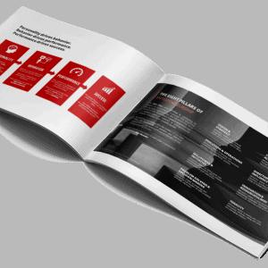 Entrepreneurship Value Profile: inside pages
