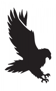 black hawk transparent bg